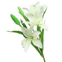 Lilie Weiß 58cm
