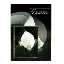 Trauerkarten mit Calla