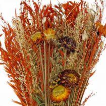 Trockenblumen Bouquet Orange-Mix 42cm