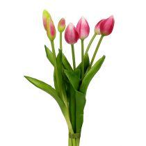 Tulpenbund Rosa Real-Touch