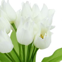 Tulpenbusch Weiß 30cm