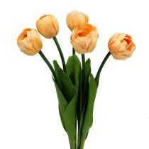 Tulpenstrauß Apricot 43cm