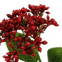 Beerenzweig Rot Viburnumbeeren 54cm 4St
