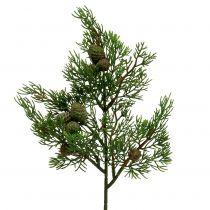 Wacholderzweig mit Zapfen Grün 39cm 3St