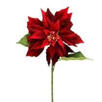 weihnachtsstern rot 70cm preiswert online kaufen. Black Bedroom Furniture Sets. Home Design Ideas