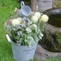 Wildblumen-Bund Schafgarbe Natur, Weiß gewaschen 30–60cm 150g