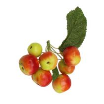 Mini-Äpfeln im Bund Ø2,5cm