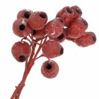 Bellgum Zweig 5cm - 7cm Rot gefrostet 20St