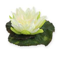 Lotusblüte schwimmend 18cm Weiß 3St