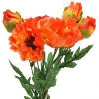 Mohn Orange 60cm 3St