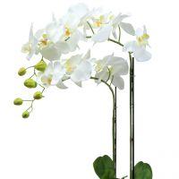 Orchidee Weiß auf Erdballen 65cm