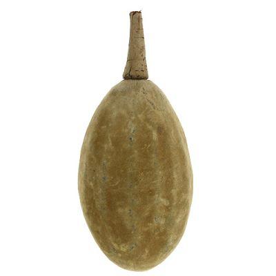 Baobab Frucht Natur 15cm - 20cm
