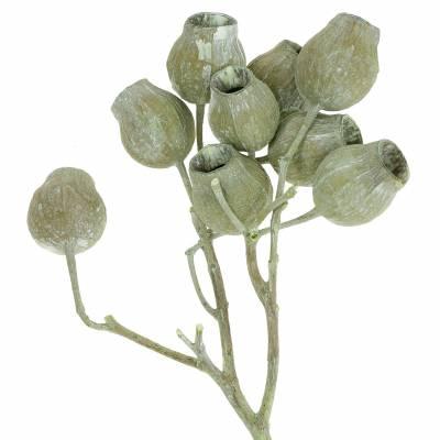 Bellgum Zweig 5cm - 7cm Grün gefrostet 20St