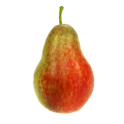 Birne Rot, Grün 11cm - 12cm 3St