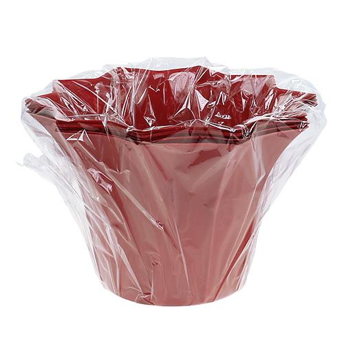 Blumentopf plastik rot 12cm 10st preiswert online kaufen for Blumentopf rot
