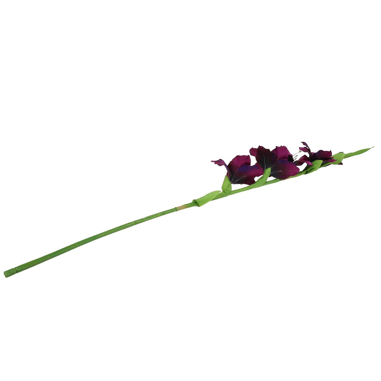 gladiolen dunkellila 86cm preiswert online kaufen. Black Bedroom Furniture Sets. Home Design Ideas