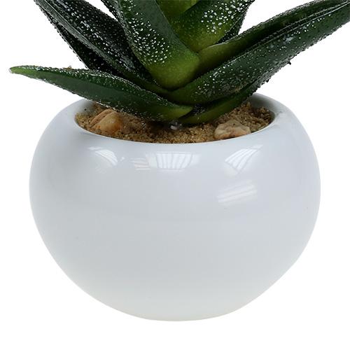 kunstpflanzen aloe im topf 14cm preiswert online kaufen. Black Bedroom Furniture Sets. Home Design Ideas