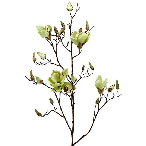 magnolienzweig gr n l110cm preiswert online kaufen. Black Bedroom Furniture Sets. Home Design Ideas