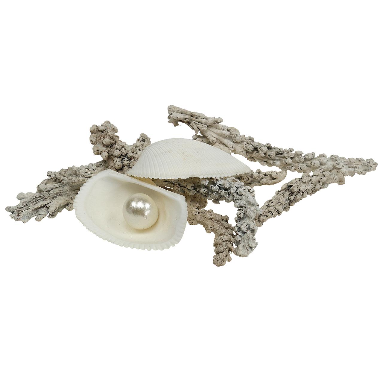 muschelmix mit perle und holz weiß 200g preiswert online
