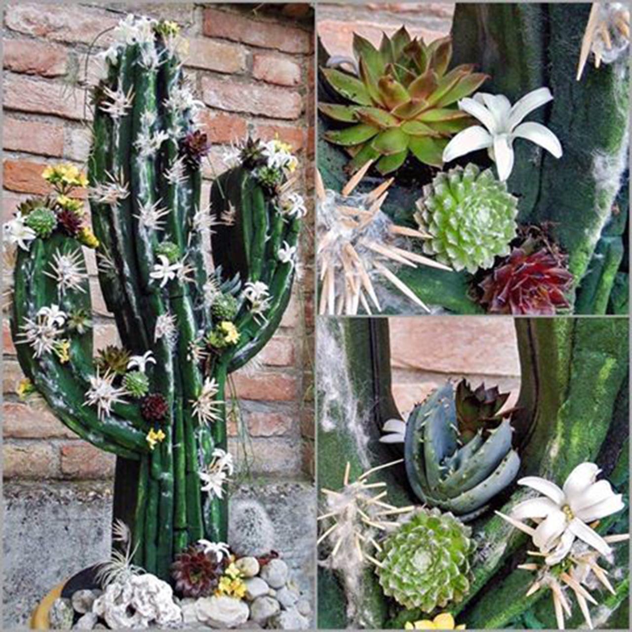 bioline kaktus schwarz 38cm x 74cm preiswert online kaufen. Black Bedroom Furniture Sets. Home Design Ideas