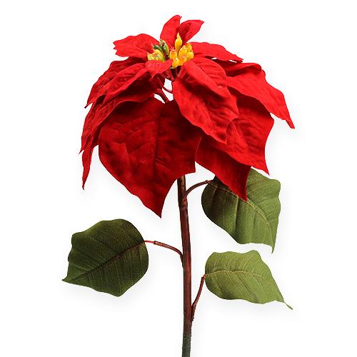 weihnachtsstern rot 65cm preiswert online kaufen. Black Bedroom Furniture Sets. Home Design Ideas