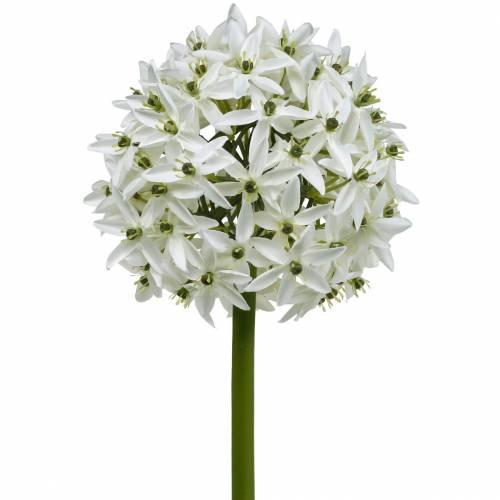Deko-Blume Allium, künstlicher Kugellauch, Zierlauch Weiß Ø20cm L72cm