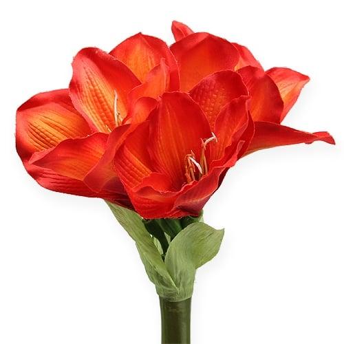 amaryllis orange rot 68cm preiswert online kaufen. Black Bedroom Furniture Sets. Home Design Ideas