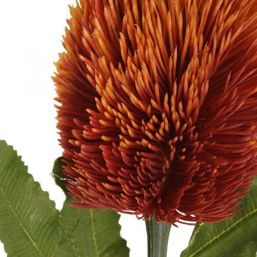 Kunstblume Banksia Orange Herbstdeko Trauerfloristik 64cm