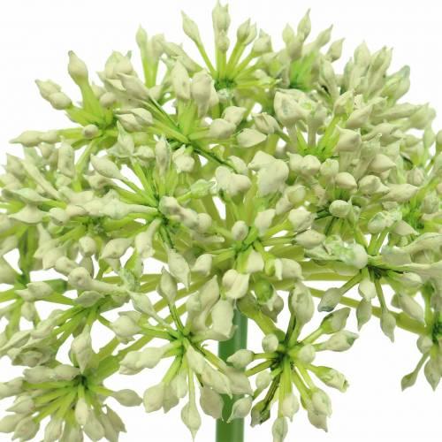 Allium künstlich Weiß 55cm