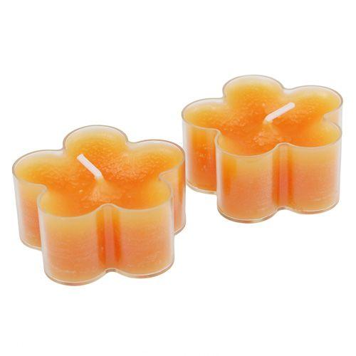 Blütenlicht Orange 12St