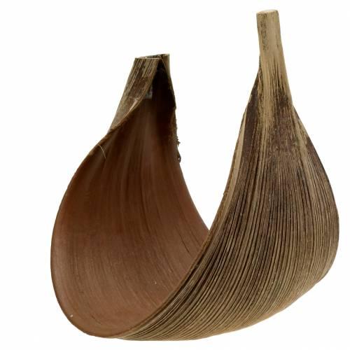 Kokospalmenblatt Galara gebogen