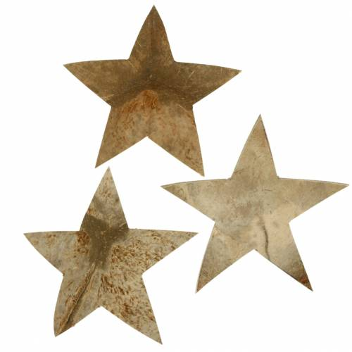Kokos Stern Natur 10cm 20St Weihnachtsdeko siber Holzsterne