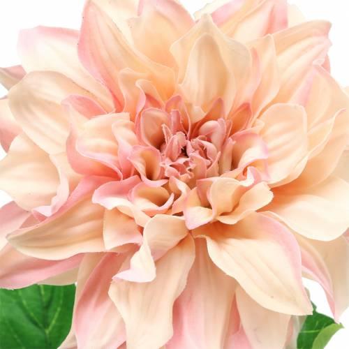 Dahlie Rosa 62cm