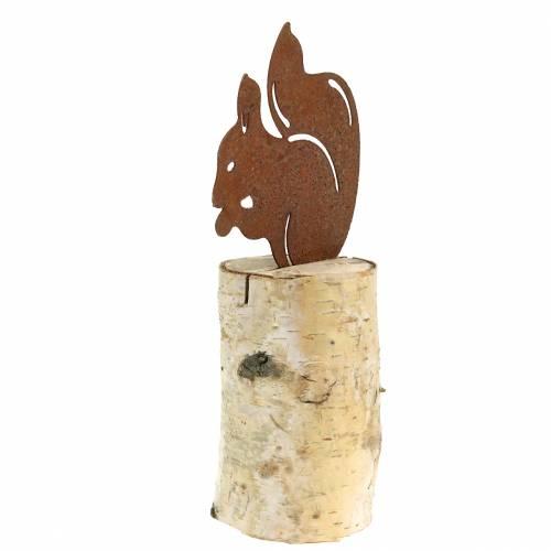 Eichhörnchen Edelrost auf Stamm H22cm
