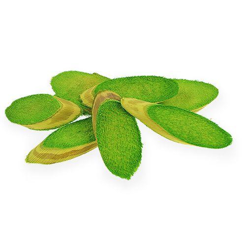 Deko-Holzscheiben Frühlingsgrün 300g