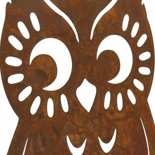 Eule Edelrost auf Birkenstamm 42cm x 36cm