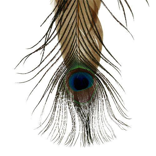 Federhänger Pfauenfeder 34cm 3St