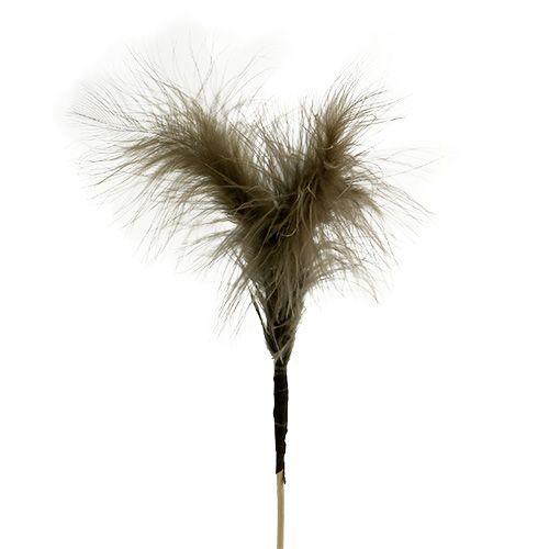 Federn zum Stecken 30cm Braun 12St