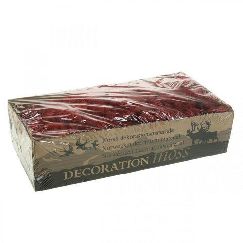 Deko-Moos Rot Bordeaux Islandmoos zum Dekorieren und Basteln 400g