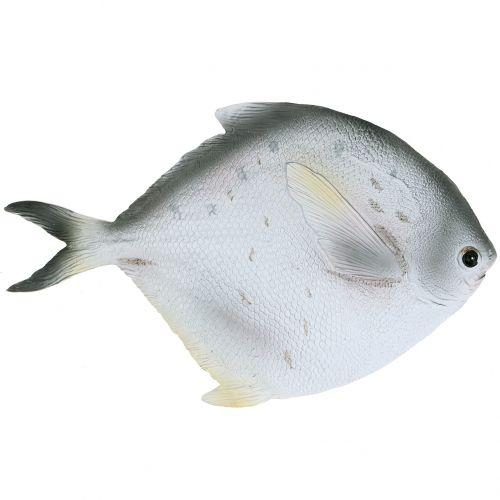 Deko Fisch L21cm