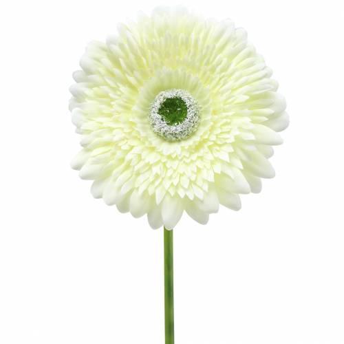 Gerbera künstlich Weiß 62cm 6St