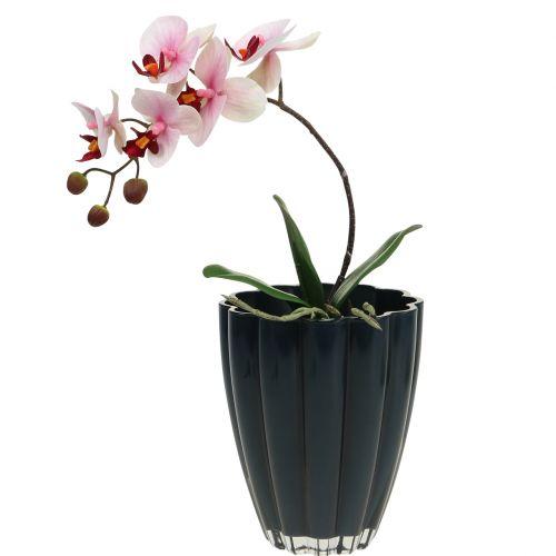 """Glasvase """"Bloom"""" Dunkelblau Ø14cm H17cm"""