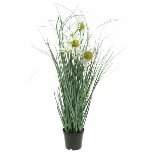 Gras mit Echinacea künstlich im Topf Weiß 56cm
