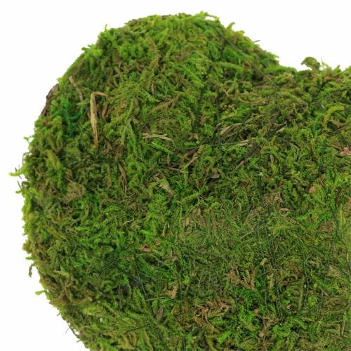 Moosherz Grün 20cm 3St