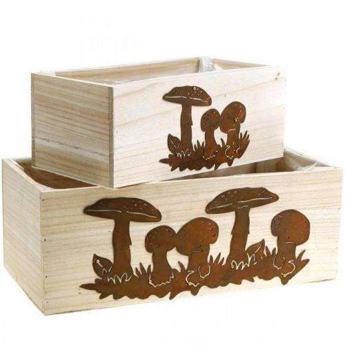 Pflanzkasten-Set, Holzkisten mit Pilzen, Herbstdeko Edelrost L40/30cm 2er-Set