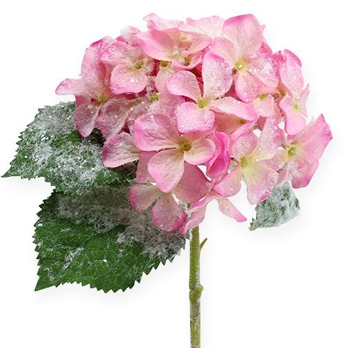hortensie rosa mit schnee effekt 25cm preiswert online kaufen. Black Bedroom Furniture Sets. Home Design Ideas
