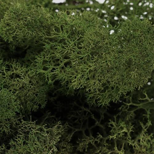 Moos Islandmoos Grün 400g