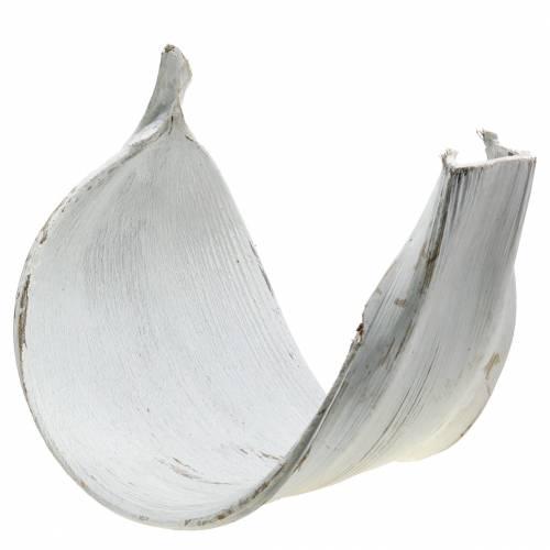 Kokosschale Kokosblatt weiß gewaschen