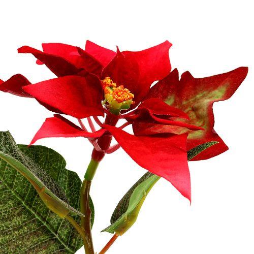 kunstblumen weihnachtsstern rot l26cm preiswert online kaufen. Black Bedroom Furniture Sets. Home Design Ideas