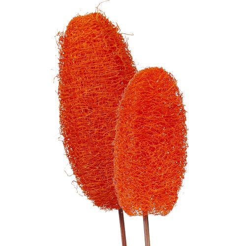 Luffa groß am Stiel orange 25St